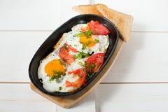 Les oeufs brouillés avec les tomates fraîches et les herbes fraîches ont fait frire dans une casserole Servi avec du pain grillé  Photo libre de droits