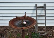 Les oeufs cachés pour l'oeuf de pâques chassent dans le bain d'oiseau dans l'arrière-cour Images stock