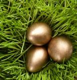 Les oeufs d'or sont dans l'herbe Photo libre de droits