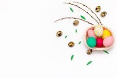 Les oeufs de caille, quelques brins de saule et le poulet ont coloré des oeufs de pâques dans un panier rose sur le fond blanc Images libres de droits