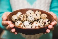 Les oeufs de caille sont sur la table brune dans les mains femelles Images stock