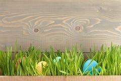 Les oeufs de pâques hiden dans l'herbe Image stock