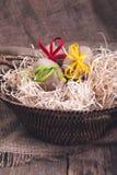 Les oeufs de pâques ont enveloppé la ficelle de laine dans le panier brun sur le fond en bois rustique avec la toile à sac heureu Images libres de droits