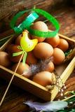 Les oeufs de pâques se sont préparés à la teinture en peaux d'oignons, décoré des feuilles fraîches naturelles, des usines, riz,  images libres de droits