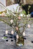 Les oeufs de pâques sur une cerise s'embranche Photographie stock