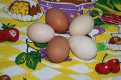 Les oeufs des poulets de village sont sous forme de fleur sur t Photo libre de droits