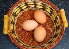 Les oeufs gratuits frais de gamme juste rassemblés des poulets d'arrière-cour ont maintenu dans un jardin arrière en Irlande du N Photographie stock