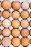 Les oeufs sont des prestations-maladie et à haute valeur protéique image libre de droits