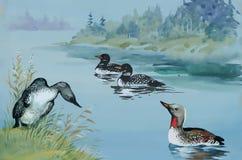 Les oies s'assemblent la natation sur l'illustration de vecteur d'aquarelle d'étang Photo stock