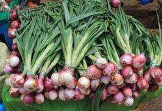 Les oignons frais à vendre à un marché mexicain calent Image stock