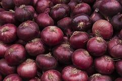 Les oignons rouges cultivent la texture Images libres de droits