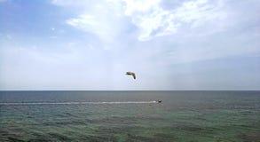 Les oiseaux chassent le bateau de pêche professionnelle outre de la côte de l'Espagne photographie stock