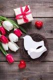 Les oiseaux décoratifs dans le nid, les tulipes lumineuses de ressort fleurit, des WI de boîte Images stock