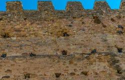Les oiseaux nichent sur les vieux murs de ville de Ségovie photographie stock