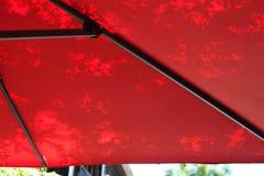 Les ombres de l'arbre part sur un parapluie rouge Images stock