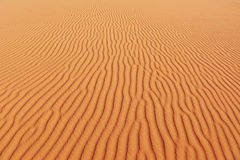 Les ondes de sable douces pétillent au soleil Photos libres de droits