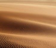 Les ondes de sable miroitent au soleil Image stock