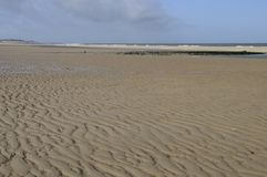 Les ondes de sable sur la Mer du Nord échouent, les Hollandes Photos stock