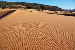 Les ondes de sable sur les dunes de sable Image libre de droits