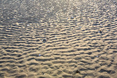 Les ondulations de sable Photo libre de droits
