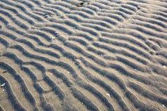 Les ondulations de sable Image stock