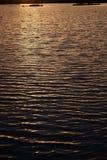 Les ondulations sur l'eau apprêtent pendant le coucher du soleil avec la végétation Images libres de droits