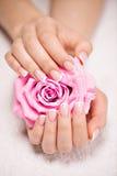 Les ongles de la belle femme avec la manucure française et se sont levés Image libre de droits