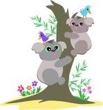 Les ours de koala lèvent un arbre illustration de vecteur