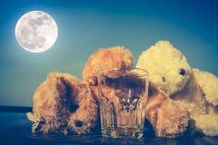 Les ours de nounours couplent l'alcoolique très ivre et le sommeil avec vide Photographie stock libre de droits