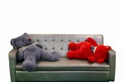 les ours dorment sur le banc de sofa dans le wa de blanc de plancher de salon et en bois photographie stock libre de droits