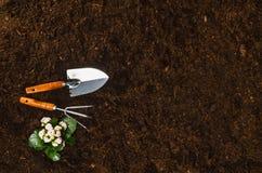 Les outils de jardinage sur le sol de jardin donnent à la vue une consistance rugueuse supérieure de fond Photo libre de droits