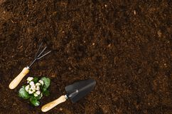Les outils de jardinage sur le sol de jardin donnent à la vue une consistance rugueuse supérieure de fond Photo stock