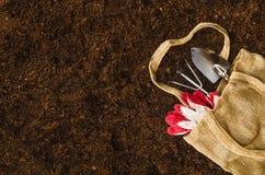 Les outils de jardinage sur le sol de jardin donnent à la vue une consistance rugueuse supérieure de fond Photos stock