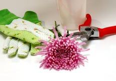 Les outils et la fleur du fleuriste photo stock