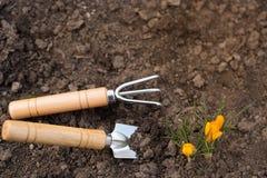 Les outils font du jardinage sol avec de petites fleurs de couleur sur le fond de nature Place pour le texte Concept de jardinage images stock