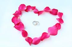 Les pétales de la fleur rose au coeur forment avec des anneaux de mariage de couples d'isolement sur le fond blanc Photographie stock libre de droits
