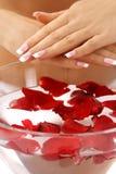 les pétales de mains de soin de bain se sont levés Photos stock