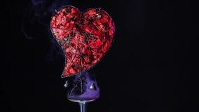 Les pétales de rose de coeur en métal fument la longueur de HD clips vidéos