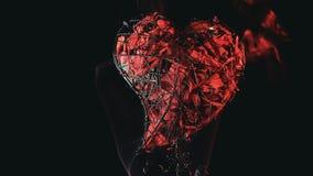 Les pétales de rose de coeur en métal fument la longueur de HD banque de vidéos