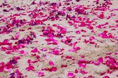 Les pétales des orchidées pourpres et des roses roses sur le sable échouent Photo stock