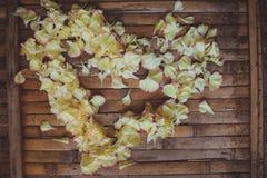 Les pétales fleurit la carte postale rustique de Saint Valentin de mariage de cadre de cerf Images stock