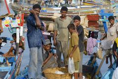 Les pêcheurs déchargent le crochet du jour, Al Hudaydah, Yémen Photos stock