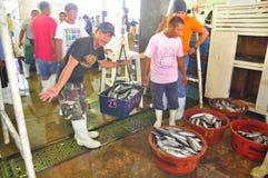 Les pêcheurs pèsent le thon au marché de fruits de mer photographie stock