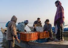Les pêcheurs sont les poissons contagieux Photographie stock