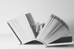 Les pages d'un livre ont courbé dans une forme de coeur Image libre de droits