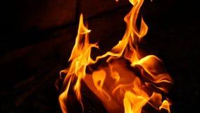 Les pages de livre br?lent en feu Feu des livres br?lants banque de vidéos