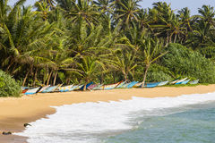 Les palmiers de noix de coco et les bateaux en bois sur le sable échouent photos libres de droits