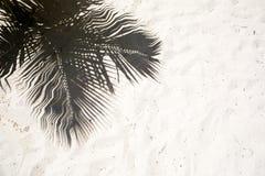 Les palmiers ont moulé des ombres sur le sable d'or lisse d'une plage tropicale à distance d'île dans la république Dominicana Image stock