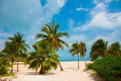 Les palmiers s'approchent de la plage de paradis cancun Plage du Mexique tropicale dans les Caraïbe Photos stock