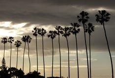 Les palmiers silhouettent sur le ciel de coucher du soleil Image libre de droits